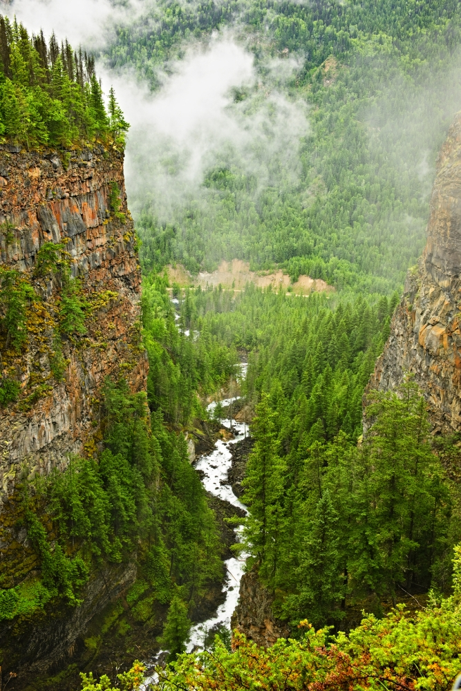 Canyon Of Spahats Creek In Wells Gray